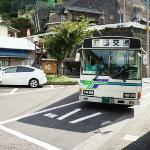 大歩危駅からかずら橋へはバスで約20分