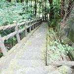 かずら橋へと続く階段