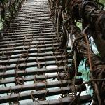 かずら橋の上から撮影