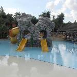 top area pool