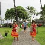 The Luau Greeters