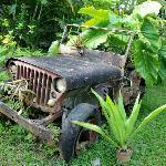 Déco dans les jardins Tendacayou