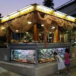 Fish Restaurant Kitchen