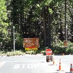 Yosemite Southern Entrance