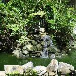 lounge gardens