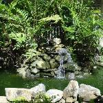 centre waterfall in lounge area