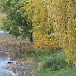 Carburn Park  |  8925 Riverview Dr. S.E.