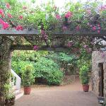 A lovely pergola at the entrance
