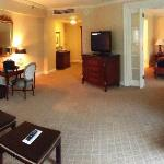 Premier Executive Suite - view of room