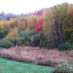 Foto de Beaver Pond Farm Inn