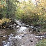 river running through campground