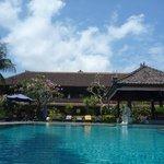 pool & grounds - beautiful