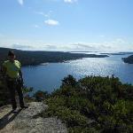 Acadia Mnt. Trail