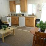 Cabin #2 kitchenette/living room