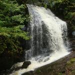 waterfall...you had to hike there