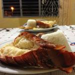 lagosta maravilhosa