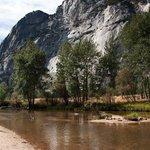 im Yosemite NP