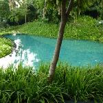 one of the most beautiful pool