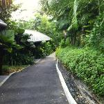 love these pathways going to the villas