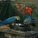 Foto di Fife Animal Park