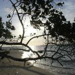 Maafushi beach and island