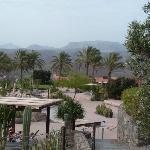 Garten und Poolanlage auf dem Dach