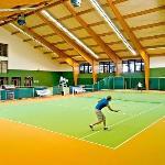 2 indoor tennis courts