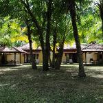 Our villas