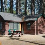 Front view of cabin with picnic table and BBQ grill outside