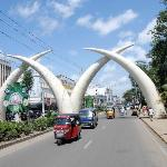 the famous elephant teeth during our city-tour