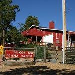 صورة فوتوغرافية لـ Keno's Llama Ranch & Guest House