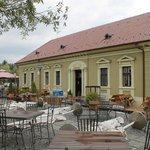Dunavska Golubica