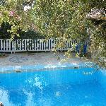 Pool Suite private pool