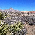 Red Rock 3