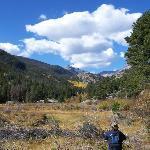 Cub lake is beyound the aspen grove