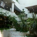 Inside Hotel, peaceful indoor terrarium ..when the rain drops on the roof it make a relaxing sou