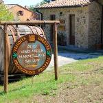 Entrance to little store on site selling Villa Mazzi's own jams, honey, olive oil and wines. Can