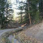 Ditch Trail (Oct, 2012)
