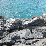 Nice Blue Water