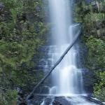 Erskine Falls, just up the road
