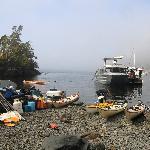 Kayaks and Water Taxi at Base Camp