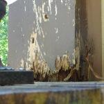 ROTTEN WOOD ON EXTERIOR