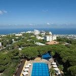 Carmel Sea & Pool View