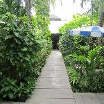 Sans Souci Garden