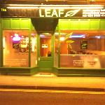 The curry leaf .Lyndhurst . England