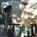 The Burns treehouse we stayed in.