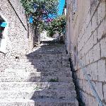 Steps going up to the guest house
