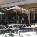 The Palms Cafeの写真