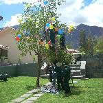 Armando el árbol para la Yunza