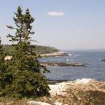 Rocky coast area